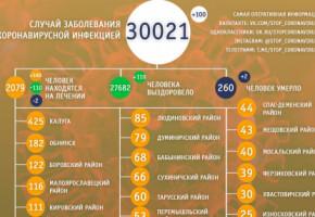 В Калужской области за сутки от COVID-19 умерли два человека