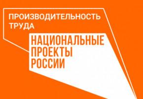Национальный проект «Производительность труда» дополнили торговлей