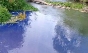 В Малоярославце приток реки Нечайки стал синим из-за загрязнения химикатами